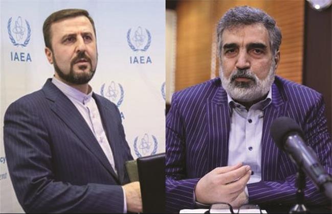 کاظم غریب آبادی:گزارش مدیر کل آژانس درباره مجتمع تسا در کرج نادرست است/ کمالوندی :  ایران به آژانس اعتراض کرد