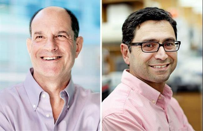 برندگان نوبل پزشکی 2021 معرفی شدند