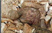 جنازه رضا شاه بعد از نبش قبر در شهرری چه شد؟