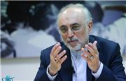 علی اکبر صالحی: حکمرانی با جبر میسر نمیشود/ یک حکمران زمانی موفق است که اصلاح پذیر باشد و به نخبگان گوش کند
